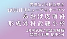 皮膚科形成外科武蔵小杉</li> </li>武蔵小杉駅徒歩1分